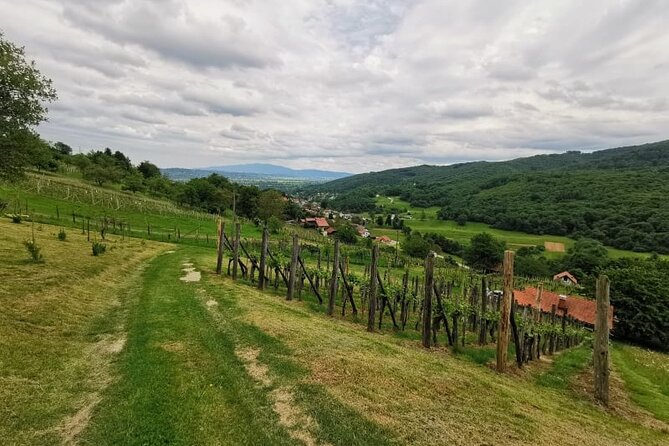 Full-Day Food Tour in Dolenjska Region with Wine Tasting