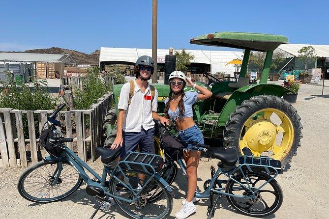 Full-Day Pedego Electric Bike Rental in Irvine