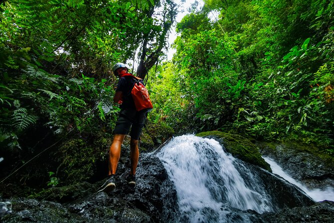 Jungle Hike with Canyoning and Rappelling in Drake Bay