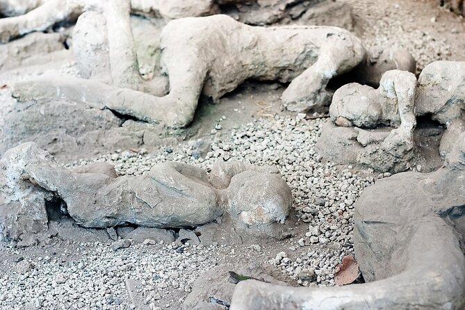 Private tour Pompeii, Vesuvius, Herculaneum from Sorrento