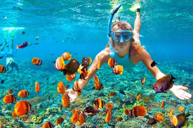 Relaxing Boat Tour With Snorkeling From Alanya