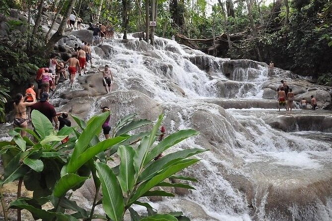 Mystic Mountain All In + Dunn's River Falls