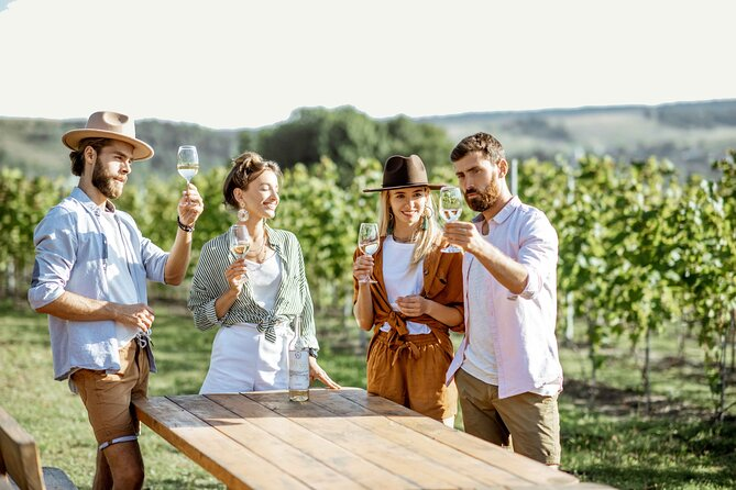 Full-Day Long Island Wine Tour from New York