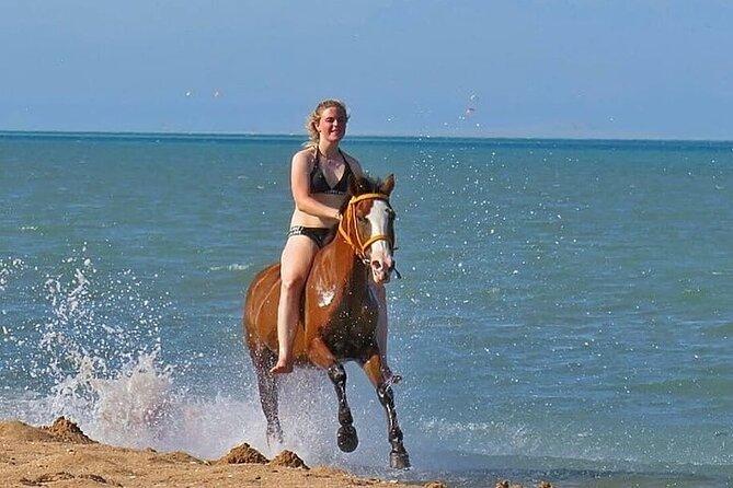 3 Hours Horse Riding ( Beach, Dessert, Swimming ) - Hurghada