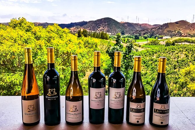 Small group Wine Tasting Tour from Lagos