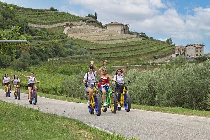Valpolicella Hills 4-Hour E-Bike and Wine Tour