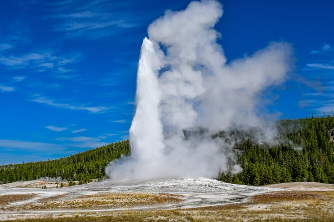 Yellowstone Lower Loop Private Tour for 10