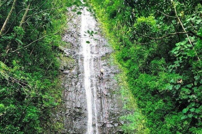 "Waterfall Hike and Nature Walk ""Small Group"""