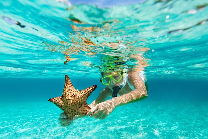 All Day Snorkel Package with Wetsuit Rental