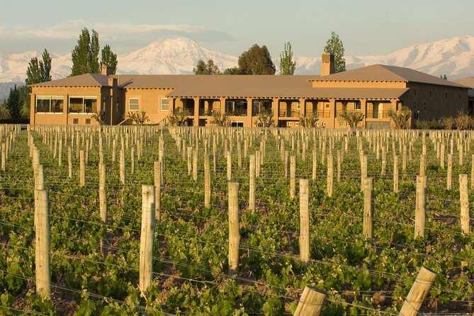 Mendoza Wine Tour with Lunch