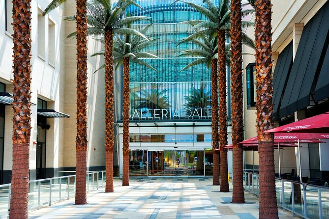 Best of Dallas Shopping Malls Combination Private Tour