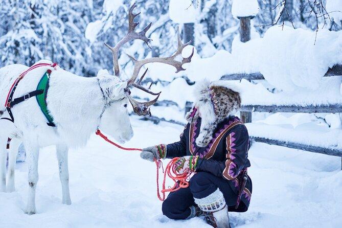 Reindeer & Husky Farm Visit by Snowmobile in Levi