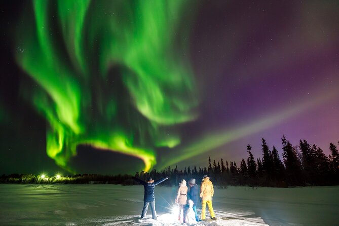 Northern Lights with BBQ in Levi