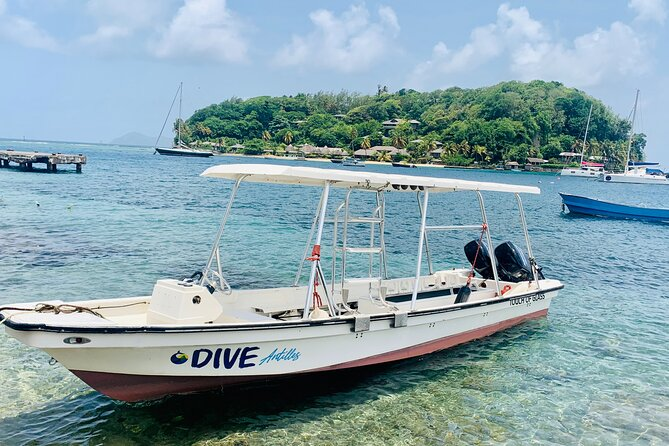 Dive Antilles: Small-Group Scuba Diving Experience in St. Vincent