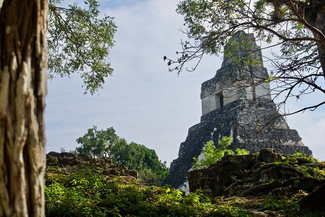 Tikal Tour with Lunch