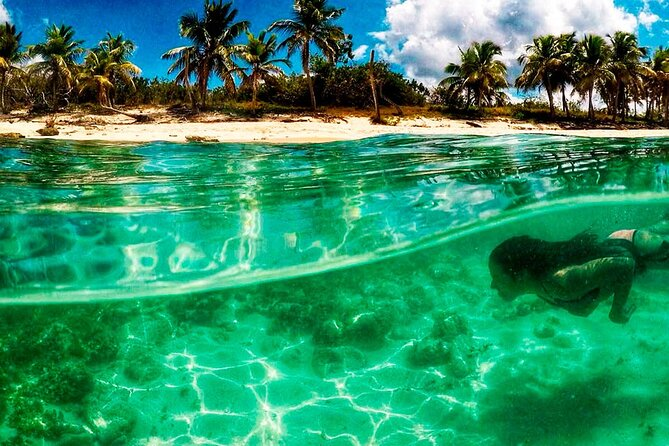 Private Dive Boat Tour on Catalina Bayahibe Island