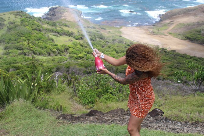 Pigeon Island National Park Private Tour & Beach Day