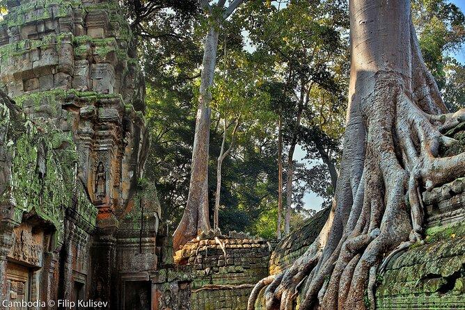 Sunrise Angkor Wat Small Group Experience