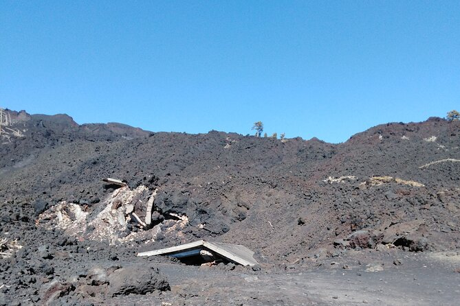 Private Tour of Mount Etna with Etna Doc Wine Tasting