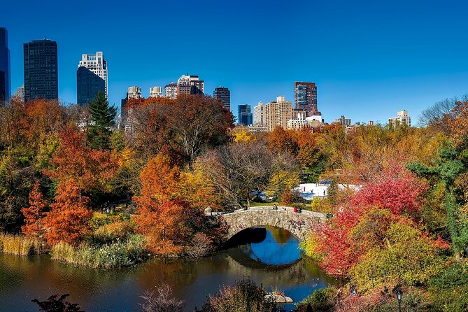 Biking at Central Park with Harlem Food Tour and Guided Visits at 2 Museums