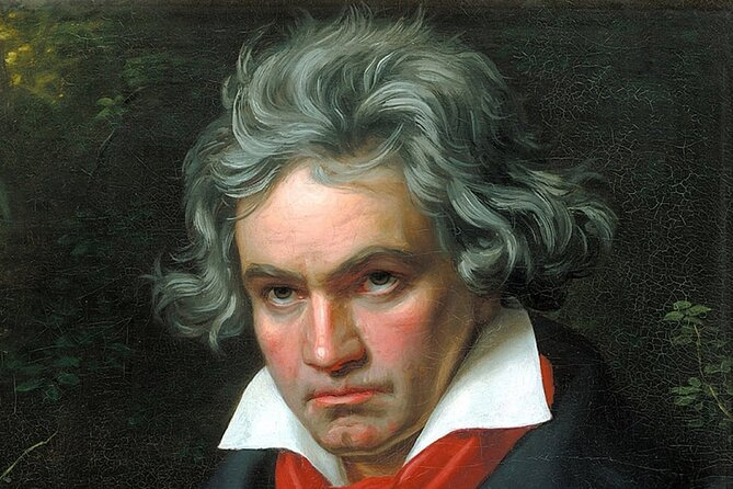 Vienna: Meet Beethoven Life Private Guided Walking Tour