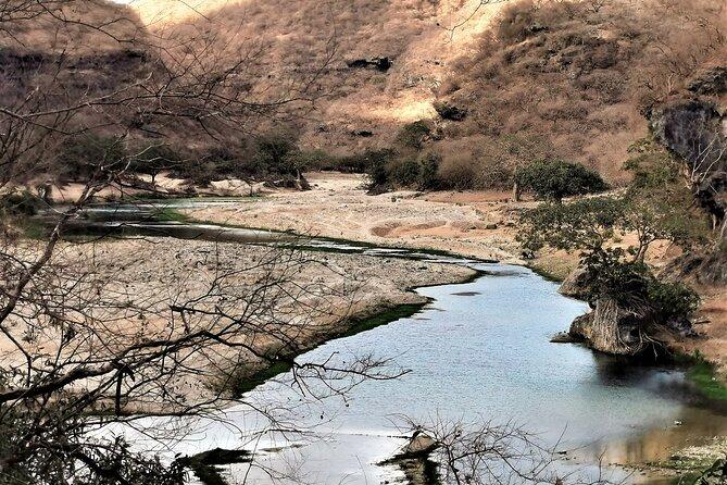 Hiking Mountain through Darbat Valley From Taqah Town