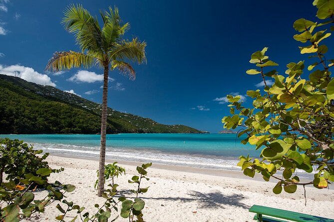 Paradise Taxi & Tours USVI-St.Thomas-Virgin Islands-Island Magen's Beach Tour