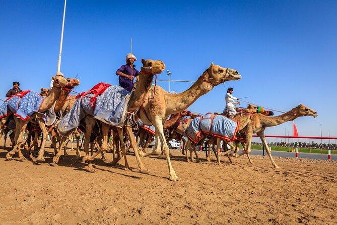 Al Ain Tour from Abu Dhabi