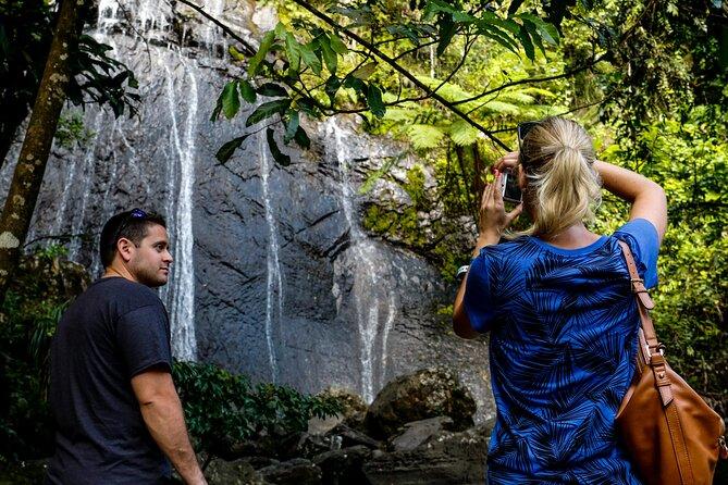 El Yunque Rainforest Experience