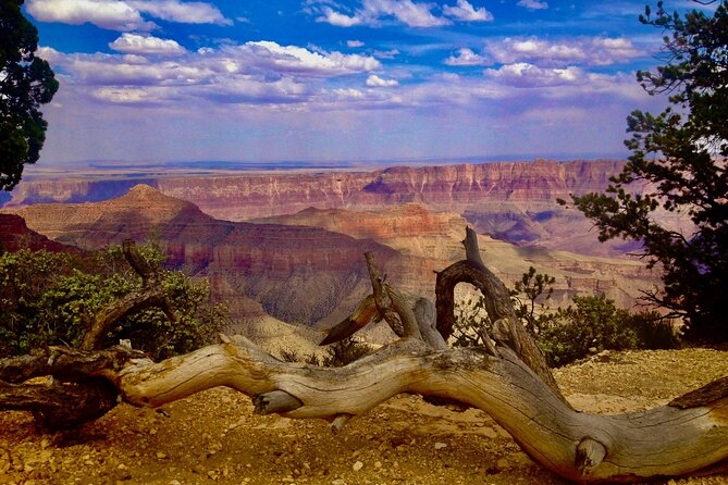 Private Tour: Grand Canyon North Rim Day Tour from Las Vegas