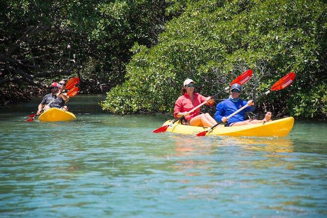 Key West Island Eco Tour with transportation