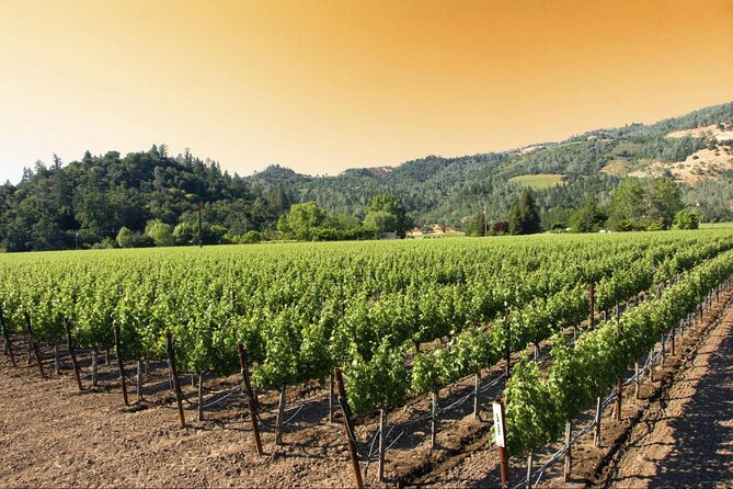 Custom 6-Hour Napa Valley Wine Tour in a Luxury Vehicle