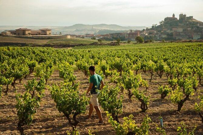 Full-Day Private Cultural and Gastronomic Adventure in Rioja