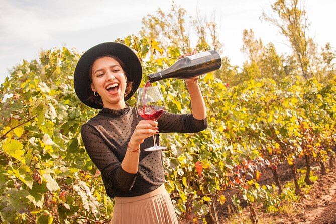 Tur til Penedes' vingårde for mindre grupper med vin-, cava- og tapassmagning