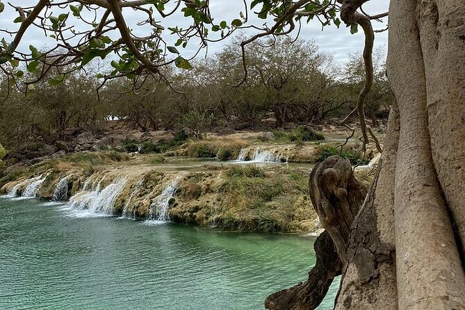 Half-Day Private Salalah East Tour with Lunch