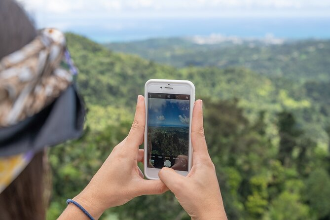 El Yunque Rainforest Half-Day Trip from San Juan
