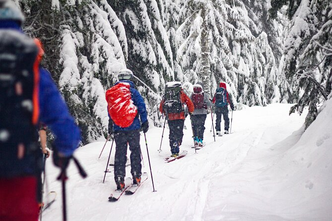Whistler Intro to Backcountry Skiing and Splitboarding