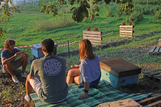 Beekeeping Farm Tour and Tasting Experience in Lazise