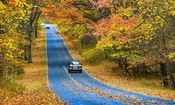 9 Incredible Leaf-Peeping Trips That *Aren't* in New England