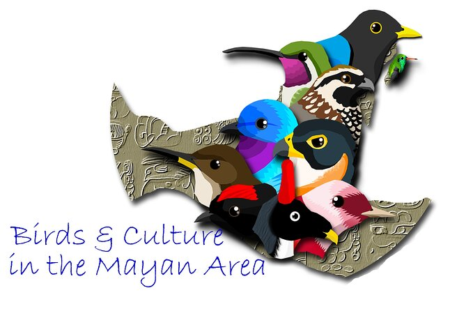 Bird Watching Tour in the Amazili Nature Reserve and Cenote Kax Ek