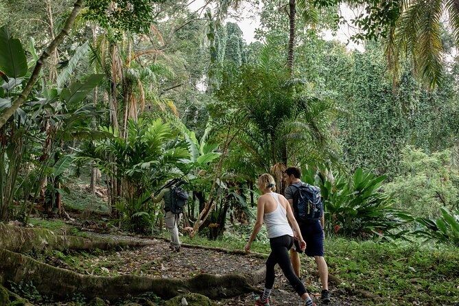 Quepos Point Nature Trails. Wildlife, Hiking, and Ocean Views Experience.