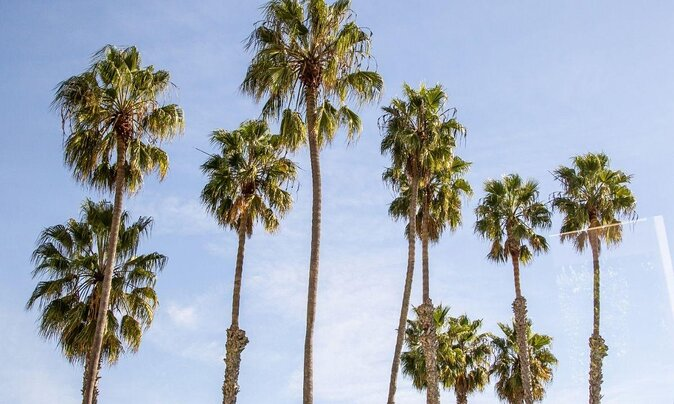 Visiting Los Angeles for the First Time? Here's What to See and Do