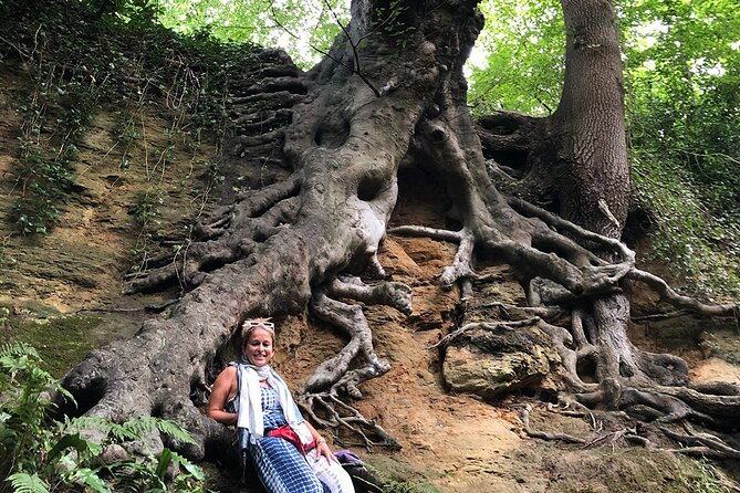 A Tour of Glastonbury, Guided by the Trees.