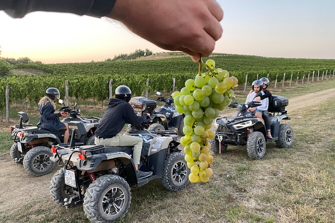 Private Quads and Gastro Tour to Istra from Opatija with Guide