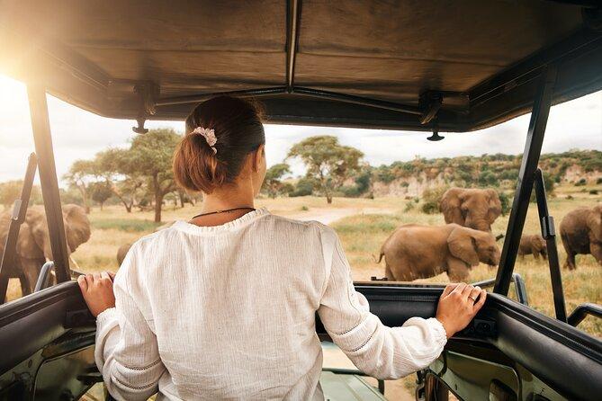 Pilanesberg Safari Adventure from Johannesburg