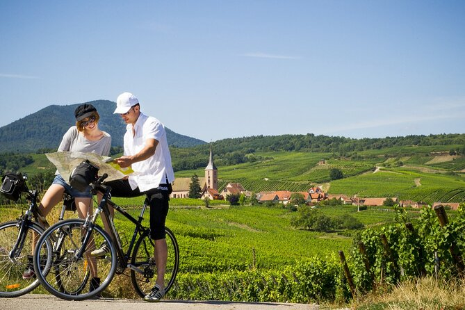 Private Day Tour on the Wine Route from Sélestat