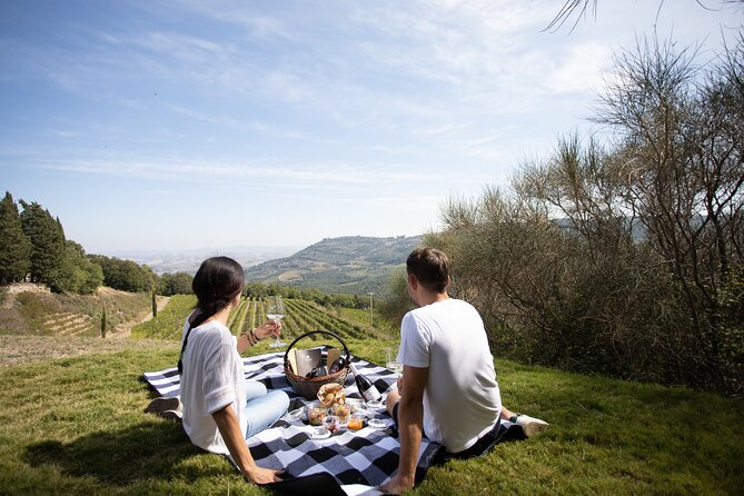 A picnic in the vineyard with aview, wine & Tuscan specialties