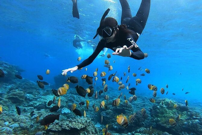 One Day Nusa Penida Island West with Snorkeling