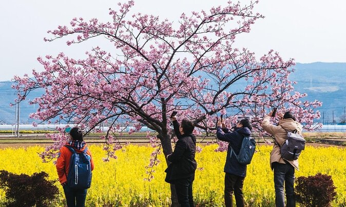 Where to Find the Best Views in Tokyo