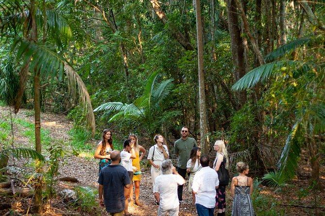Cape Byron Distillery and Rainforest Tour